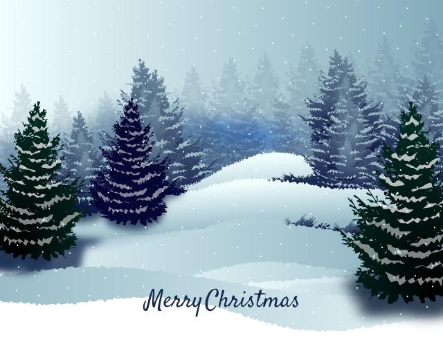 christmas-2948133_1920.jpg